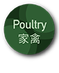 Poultry 家禽